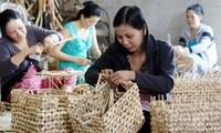 Medios de sustento para los pobres en la lucha contra la pobreza