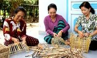 Promueven papel de mujeres en la renovación rural de Phong Dien