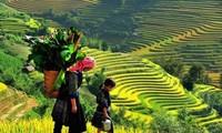 La sencilla belleza de la región montañosa de Vietnam