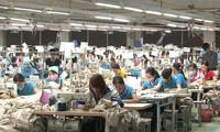 Vietnam entre los cinco mayores exportadores mundiales de productos textiles