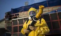 Vietnam no reporta ningún caso afectado por el virus Zika