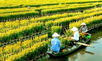 El pueblo de flores de Sa Dec por recibir gran número de turistas en Nuevo Año Lunar