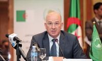 Unión Africana reactiva grupo de contacto especial para crisis en Libia
