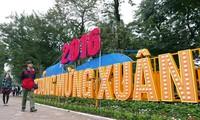 Hanoi recibe el Tet con flores y luces brillantes