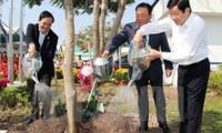 Lanzan movimiento de plantación de árboles en Tuyen Quang