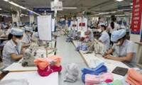 Aumenta cuota de productos textiles vietnamitas en mercado estadounidense
