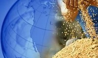 Vietnam asiste a la 33 Conferencia de la FAO para Asia – Pacífico