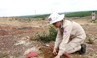Vietnam se esfuerza por mitigar secuelas de bombas y minas remanentes
