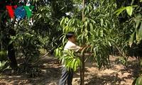 Dinh Cong Tam, un emprendedor que logró vencer la pobreza y progresar