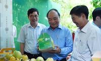 Primer ministro continúa visita de trabajo en provincia de Dong Thap