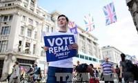 David Cameron urgió a británicos a votar por la permanencia del Reino Unido en la UE