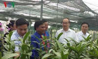 Líder de organización de masas insta a promover aplicación de alta tecnología en agricultura