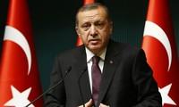 Esfuerzos del gobierno turco en recuperar estabilidad nacional