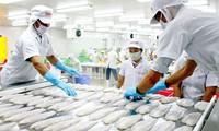 Unión Económica Asia-Europa y Vietnam desplegarán libre comercio desde octubre