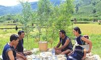 Etnia K'ho en las Tierras Altas centrales