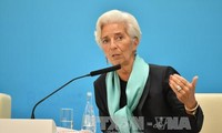 FMI mantiene en 3,1% expectativa de crecimiento global en 2016