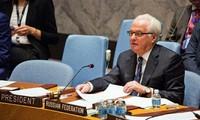 Discrepancias profundas en el Consejo de Seguridad de la ONU sobre la paz en Siria