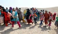 Ciudad de Mosul al borde de crisis humanitaria