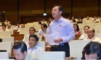 Parlamentarios vietnamitas piden concentrar recursos en reestructuración económica