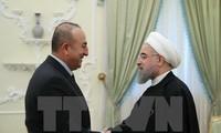 Irán interesado en cooperar con Turquía para la solución de problemas de Siria e Irak
