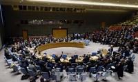 Rusia y China vetan un proyecto de resolución sobre alto el fuego en Alepo