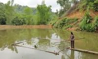 Bac Kan camino a construir nueva ruralidad