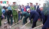 Jóvenes promueven la siembra de árboles en contribución a la protección ambiental
