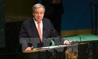 Preocupada ONU por la escalada de tensión en el Sahara Occidental