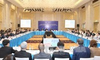 Vietnam propone cuatro iniciativas prioritarias en APEC 2017
