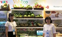 Empresas vietnamitas promueven productos agrícolas en feria Gulfood en Dubai