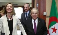 Unión Europea y Argelia abogan afianzar lazos bilaterales