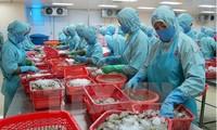 Productos acuíferos vietnamitas pretenden aumentar la confianza de consumidores europeos