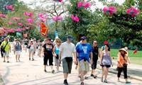 Afluencia de  turistas extranjeros en Vietnam aumenta dramáticamente en noviembre