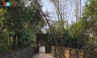 Pagoda de Bo Da, Patrimonio Nacional Especial