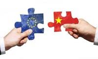 Unión Europea aplaude plan de Vietnam de participar en los convenios internacionales de trabajo