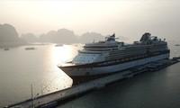 Puerto turístico de Ha Long recibe primer crucero internacional