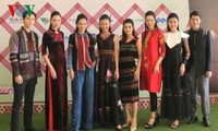 Celebran primer Festival Cultural del Brocado de Vietnam en diciembre