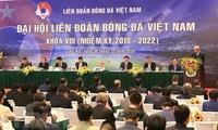 Vietnam proyecta llevar el fútbol nacional al Top 10 de Asia
