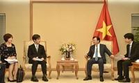 Vietnam y Japón tienen altas potencialidades de cooperación