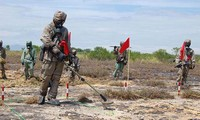 Llaman a una mayor cooperación entre Vietnam y Estados Unidos en la superación de secuelas de guerra