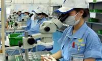 Vietnam atrae inversiones extranjeras directas récord en tres años
