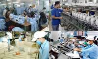 Vietnam alienta el desarrollo del área privada