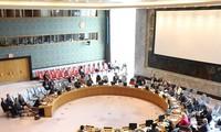 Candidatura de Vietnam al Consejo de Seguridad de la ONU: responsabilidad para la paz mundial