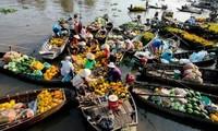 Celebrarán en unos días en Can Tho Festival del Mercado Flotante de Cai Rang