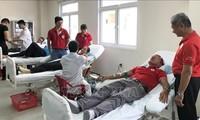 Ciudad central de Vietnam promueva donación de sangre