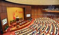 Abordan resultados del último periodo de sesiones del Parlamento vietnamita y la preparación del próximo