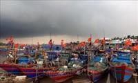 Presidente de la Comisión de Comercio Internacional del Parlamento Europeo aprecia esfuerzos de Vietnam por pesca legal