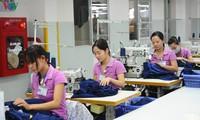 Aprecian expertos internacionales aprobación del enmendado Código de Trabajo de Vietnam