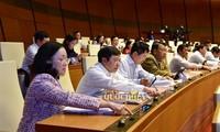 Penúltima jornada de trabajo del octavo periodo de la Asamblea Nacional de Vietnam