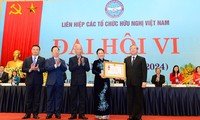 Elogian aportes de la Organización de Asociaciones de Amistad de Vietnam